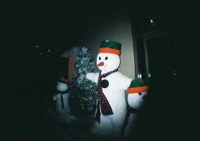 Frosty And Friends by lomocotion