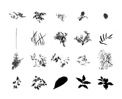 Foliage Brush Set - images by dierat