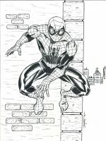 SUPERIOR SPIDER-MAN by FanBoy67