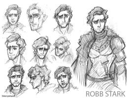 Robb Stark by seeth