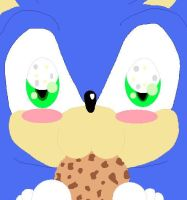 Sonic Cookie NOM NOM by Shadaily