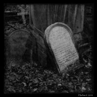 The avengeur by Hurlem