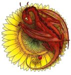 Dragon on a Sunflower by Strange-Argument