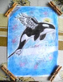 Orca Angel by Lukinhasarts