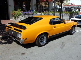 1970 Ford Mustang 351 Mach 1 by Partywave