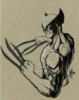 Daken by artofJEPROX