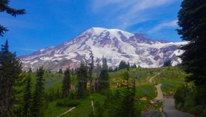 Mt. Rainier from Paradise by napoland