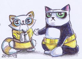 Funny cat ACEO Kung fu panda by KingZoidLord