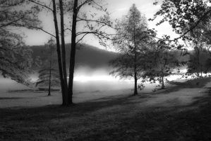A fall Morning Bw by yamiyalo
