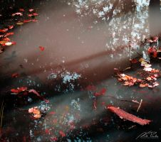 The Autumn Leaves 2 by NicPi