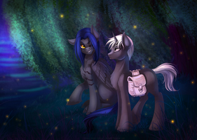 night park by LimreiArt