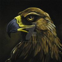 Golden Eagle Portrait by HouseofChabrier