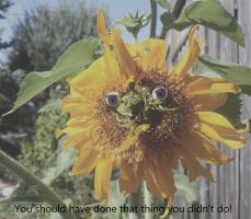 The Glaring Sunflower Of Self Doubt by KeswickPinhead