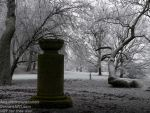 Memorial Place - Germany, winter 2017 by AngelOfDarkness089