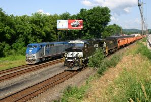 Amtrak Norfolk Southern race by DragonWolfACe