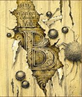 Letter B by DalfaArt