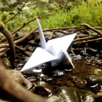 Paper crane by LujLious
