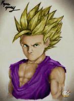 Dragon Ball - Gohan by songohanart