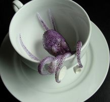 Teacup Octopus by fairchildart