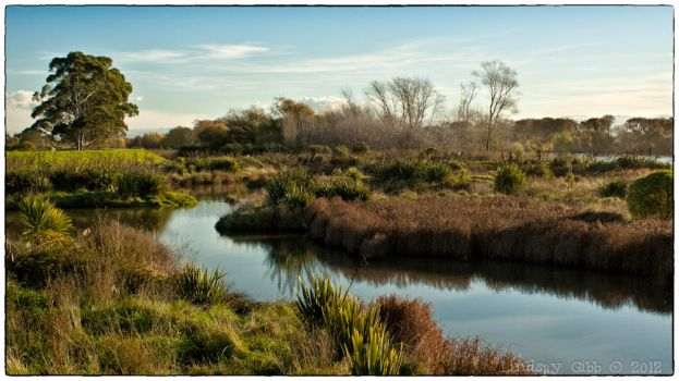 The Wetlands... by theLostBeeGee
