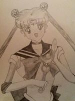 Sailor Moon... With ears xD by MoonProphecy