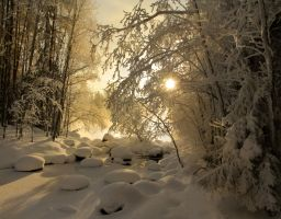 winter sun II by KariLiimatainen