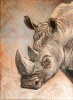Rhino by milanglo