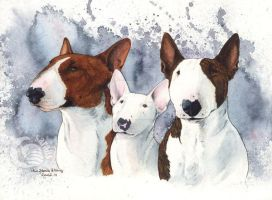 Pixie, Blondie and Marley by saraquarelle