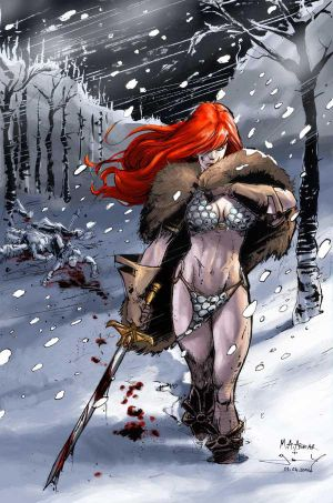 http://th05.deviantart.com/fs8/300W/i/2005/362/9/e/Red_Sonja_by_anjum.jpg