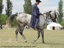 Hungarian Festival Stock 013 by CinderGhostStock
