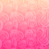 Textura De Rosas by DianaBiebsEditions