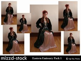 Eastern Emissary Pack 1 by mizzd-stock