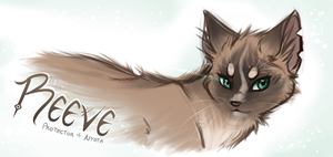 SFS - Sketchy Banner - Reeve by Kitsanil
