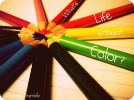 What's Life Without Color by LydiaJeanPhotography