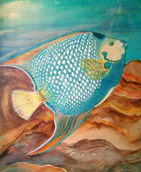 Angel Fish by GinnasGallery