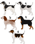 Coonhound Imports (Updated!) by TripleThreatKennels