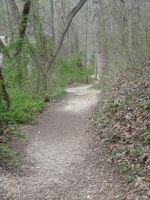 The Path From by SnapShot120