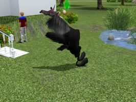 Sims 3 - I broke my horse. by Whitefang45