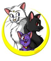 A Cat Family by Pokelai