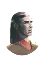The portrait of an elven lord by Jeicee
