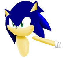 sonic's half body in sonic rivals 3 by shadmart