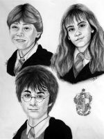 Harry, Ron, Hermione by abish