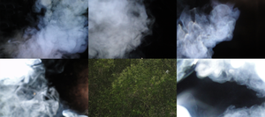 5 Smoke Stocks 1 Nature Stock by GrahamPhisherDotCom