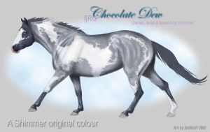 VHR - Blue Roan Overo by SheWolff