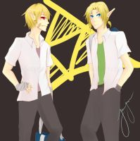 AU: Sheik and Link by Sapphirestone91099