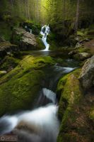 Life is a waterfall @ Retezat, M.Magdalena by Pod-Photography