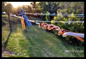clothes line by anotheradrian