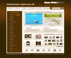 Professional Templates by webgraphix