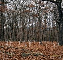 Field of Crosses by TRE2Photo-n-Design