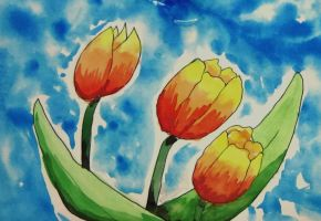 tulips by AliceColours